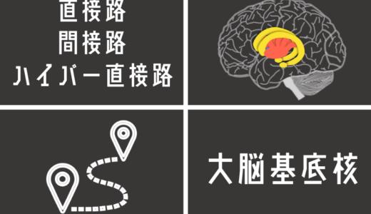 大脳基底核の経路は運動にどう関るのか?直接路・間接路・ハイパー直接路を図を使ってわかりやすく解説!