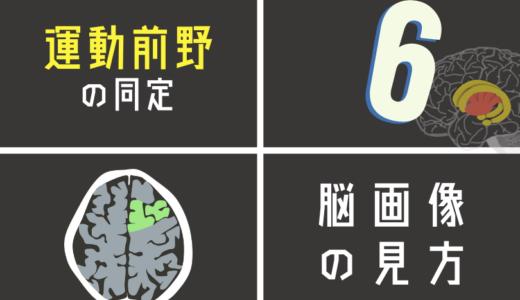 失調症状に関わる運動前野(6野)を脳画像から探す方法とは?